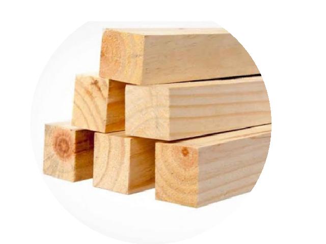 Pontalete de Pinus